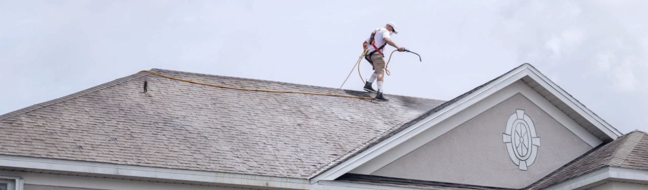 Soft Washing Your Roof: Protecting Vulnerable Surfaces